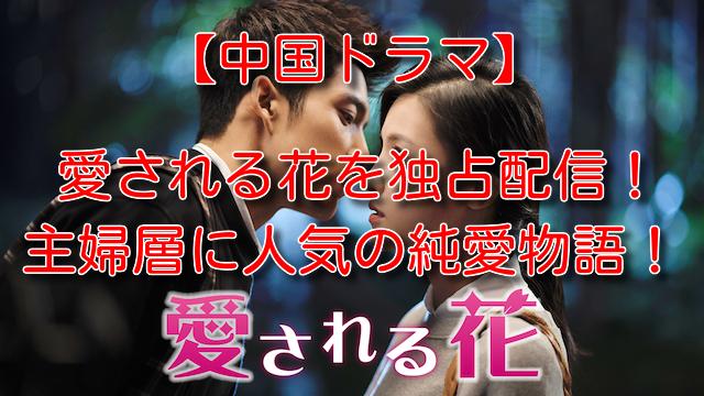 愛される花 ドラマ 小説